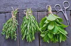 aroma herbal - stock photo