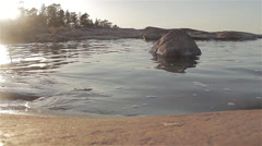 Peaceful waves rolling in to rocky shore during sunset - 1920x1080 24p - stock footage