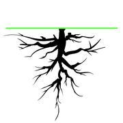 Tree Root Stock Illustration