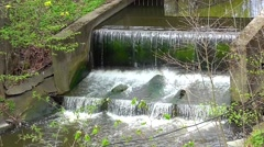 Waterfall in the Kaliningrad Zoo Stock Footage