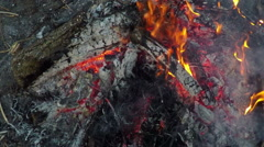 Campfire in slow motion Stock Footage