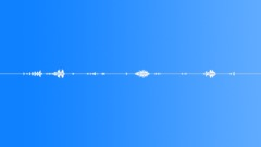 Nature Birds Morning Loop - sound effect