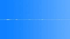 Nature Birds Loop 03 - sound effect