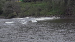 Waves on a river in slow motion - elbe dresden Stock Footage
