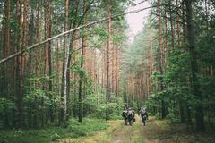 Unidentified reenactors dressed as German soldiers during march in forest - stock photo
