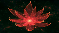 Lotus Water Lily, Enlightenment or Meditation and Universe, Magic scene Stock Footage