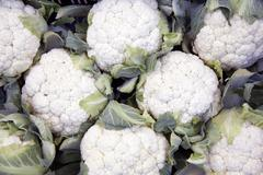 lot of cauliflowers packed together - stock photo