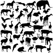 Stock Illustration of Set  silhouettes  animals and birds in the zoo collection. Vector illustratio