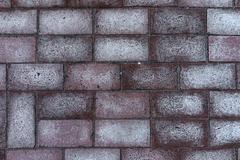 Paul rectangular red brick with white spots - stock photo