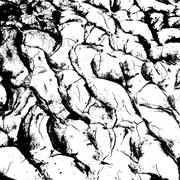 Stock Illustration of cracked clay ground into the dry season. Vector illustration.