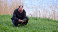 Senior farmer checking wheat in spring Stock Footage