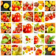 Many varieties of colorful tomatos - stock photo