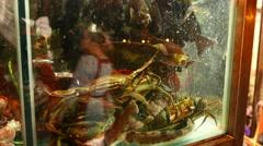 Aquarium full of sea inhabitants, show-window of seafood restaurant Stock Footage