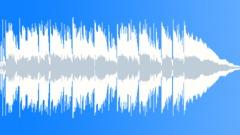 30sec edit Fun Happy Cowboy Jazz With Mandolin Stock Music