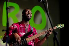 African bass player - stock photo