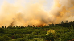 Forest fires in the city the spread of fire to the village. Stock Footage