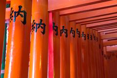 Torii from tokyo - stock photo