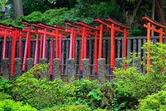 Torii in shinto shrine, Tokyo - stock photo
