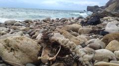 Crimea Russia Sevastopol Fiolent - sea, bird corpse, waves, static camera 1 - stock footage