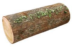 Wooden log Stock Photos
