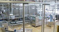 On belt conveyor moving beer bottles in the factory shop Mosbeer Stock Footage