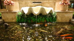 Indoor Fountain And Carp Fish In Pond Stock Footage