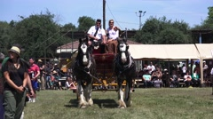 Scottish, Clydesdale Horses and wagon Stock Footage