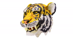 Growls tiger head (three-quarter view). Stop motion animation. Stock Footage