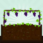 Grapevine and compost - stock illustration