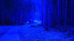 Unknown, scarry path in the forest under blue light Stock Footage