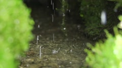 Clean water dripping on the green mosses of slow motion in a hole Stock Footage