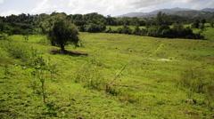 Luquillo, Puerto Rico Land Stock Footage
