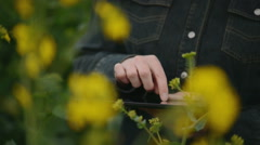 Female Farmer using Digital Tablet Computer in Rapeseed Agricultural Field - stock footage