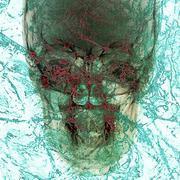 Pathogen abstract background Stock Illustration