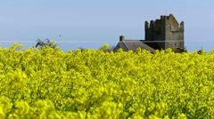 Castle and Rapeseed farm Stock Footage