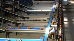 apple packing conveyor belt - stock footage