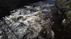 Whitewater river in spring - tilt Stock Footage