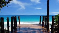 wooden footpath to the coulurful indian ocean Stock Photos