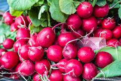 Bunches of radish at city market square Stock Photos