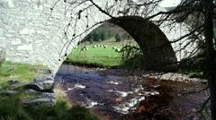 Single Arch Stone Bridge Stock Footage