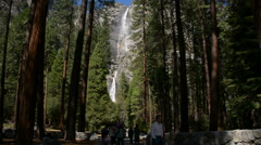 Stock Video Footage of Yosemite Falls and Forest 01