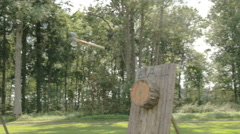 An axe thrown on the log but not on target Stock Footage