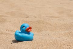 White beach - sand, ocean, blue sky - sun beds and duckling - stock photo
