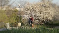 Loving young couple under a blooming tree in spring in the Park. Romance, Dating Stock Footage