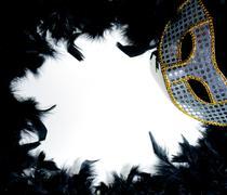 Mardi Gras Mask on Bed of Feathers Kuvituskuvat