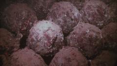 Underwater shot of ammunition in sunken shipwreck Stock Footage