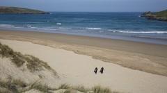 Surfers walking towards camera Crantock beach Cornwall England UK near Newquay Stock Footage