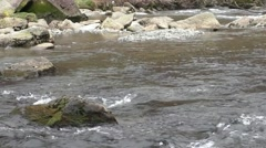 River flowing over rocks Stock Footage