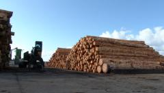 Logging Industrial Area Shipping Yard Stock Footage