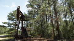 Oil Donkey in the Forest Stock Footage